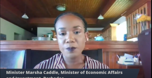 Minister in the Ministry of Economic Affairs, Marsha Caddle.