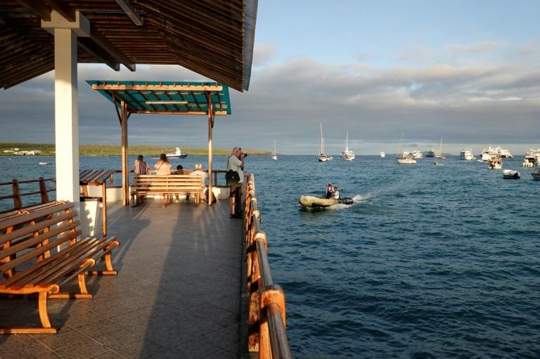 La jetée de Puerto Ayora, aux îles Galapagos (Equateur), le 13 février 2019