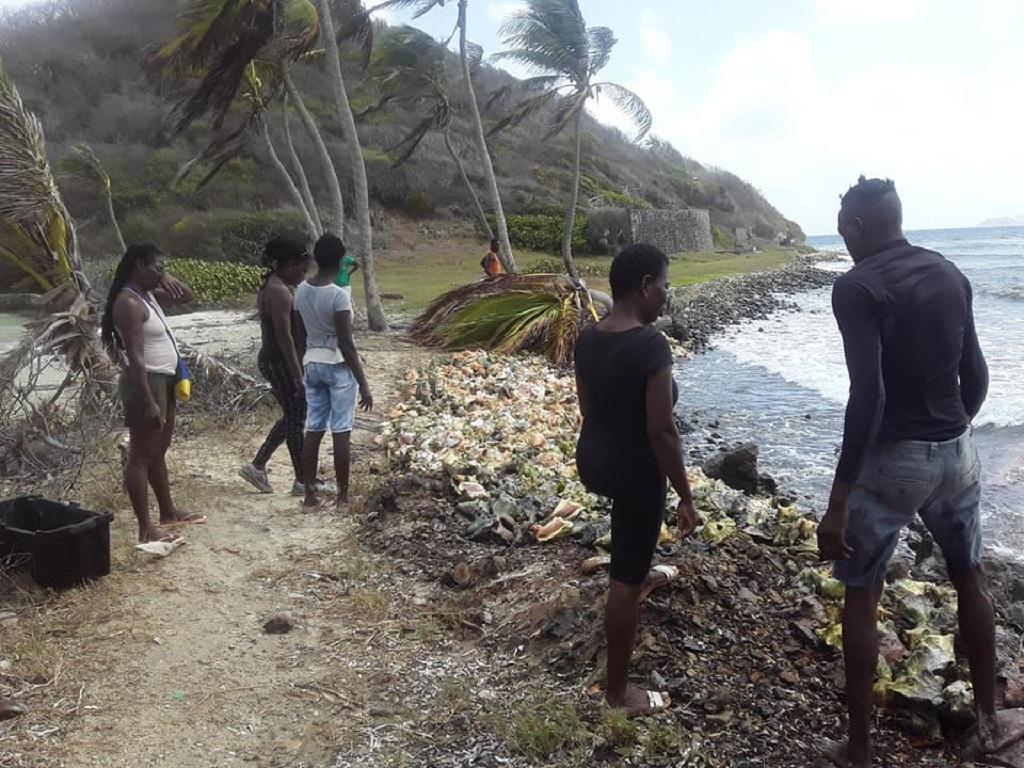 Residents try to stop the coastal erosion taking place at Salt Whistle Bay. Photo credit: Oshea Ford
