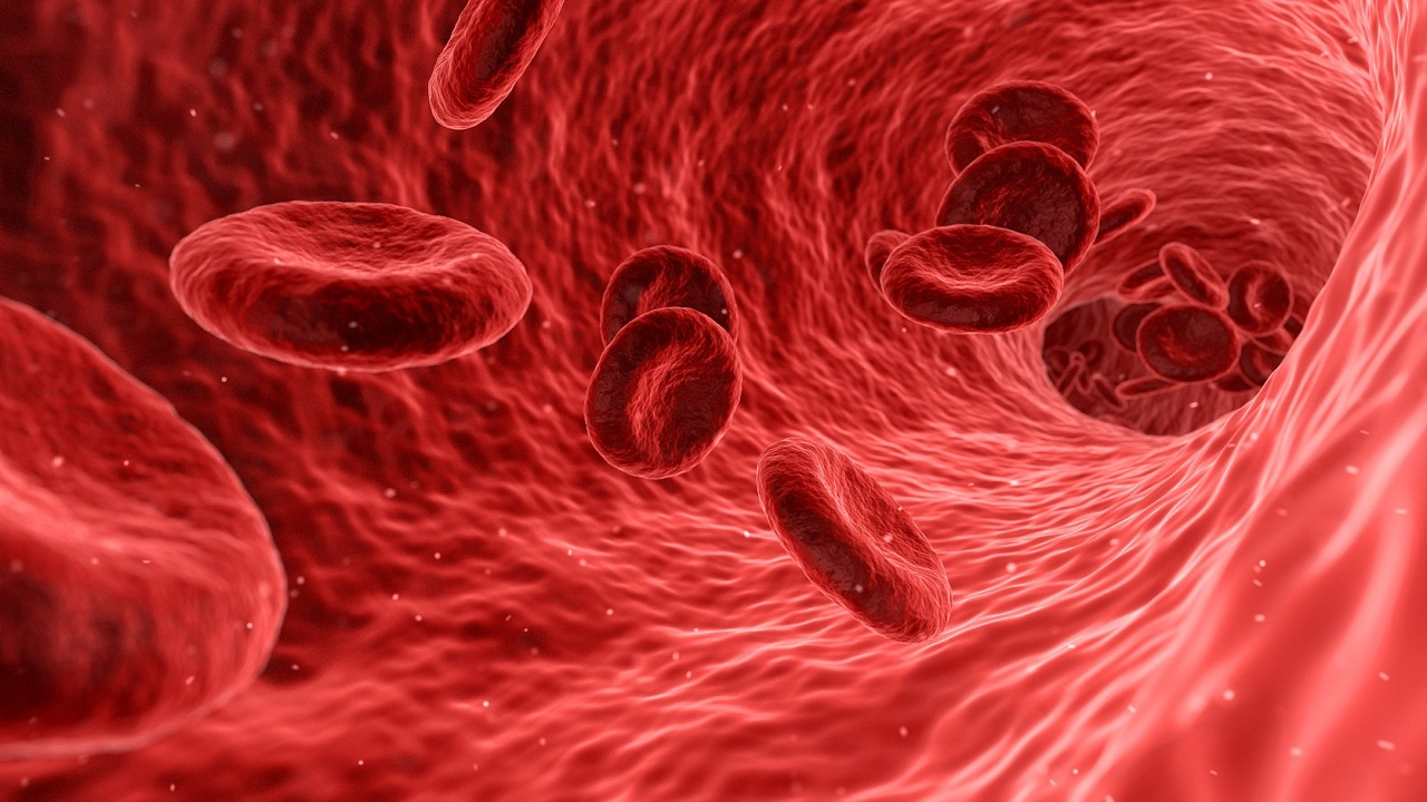 (Image: Red blood cells)