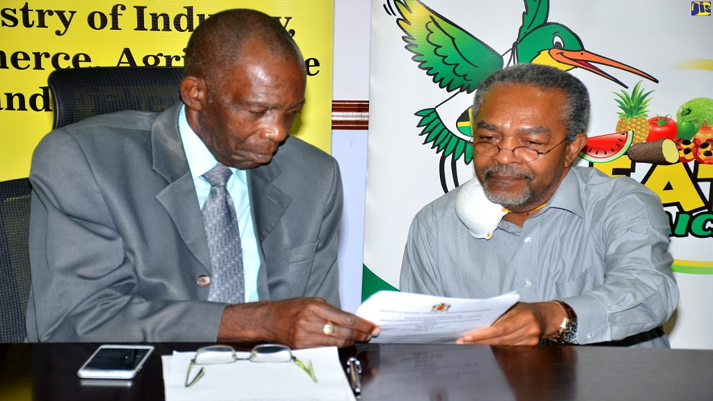 Minister without Portfolio in the Ministry of Industry, Commerce, Agriculture and Fisheries, Hon. J.C. Hutchinson (left), in discussion with consultant, Dr Omer Thomas, at a virtual town hall meeting on Wednesday, June 10.