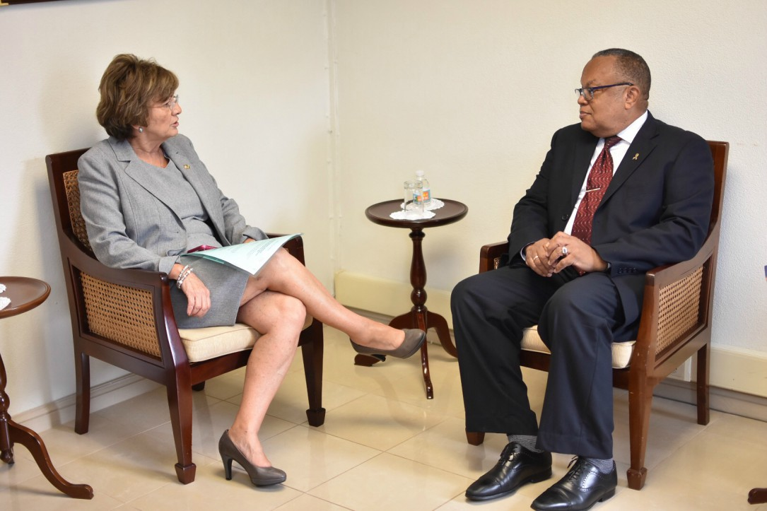 US Ambassador to Barbados, the Eastern Caribbean and the OECS Linda Taglialatela at a meet with Barbadian Foreign Minister Jerome Walcott (FILE)