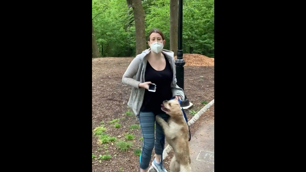 This file image made from May 25, 2020 video provided by Christian Cooper, shows Amy Cooper with her dog talking to Christian Cooper in Central Park in New York. Amy Cooper, walking her dog who called the police during a videotaped dispute with Christian Cooper, a Black man, was charged Monday, July 6, 2020, with filing a false report. (Christian Cooper via AP, File)