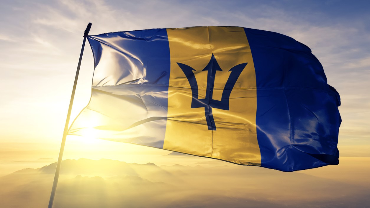 Barbados flag (Stock photo)