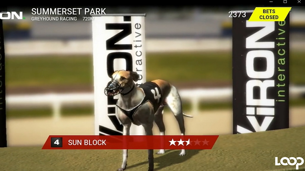 The dog racing virtual game is reportedly a fan favourite.
