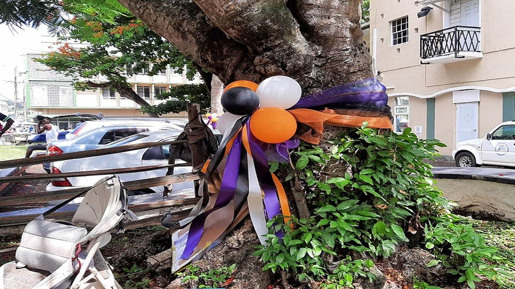 Raise Your Voice St Lucia's tribute to gender and domestic violence victims.