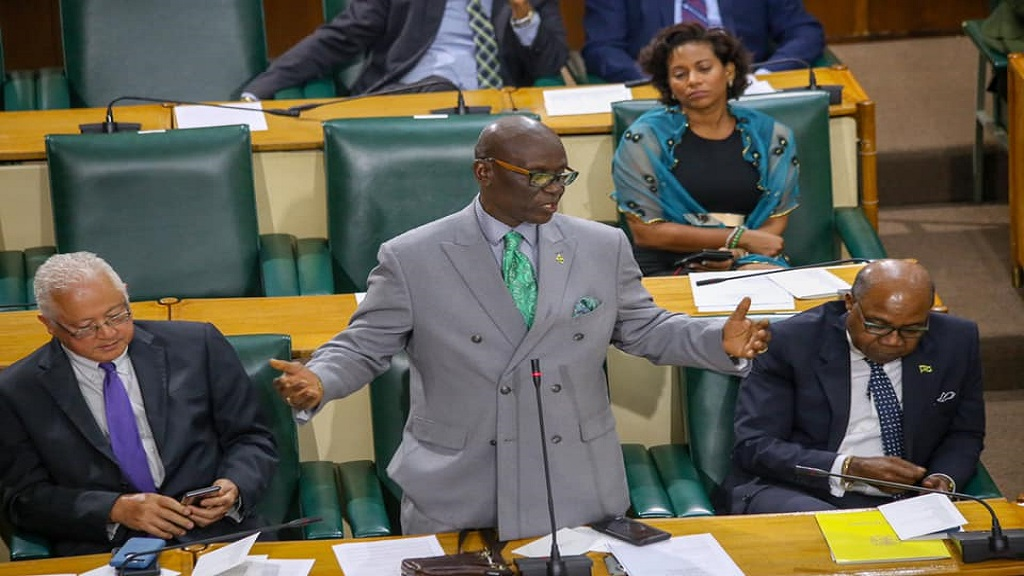 Local Government Minister Despond McKenzie speaking in Parliament.