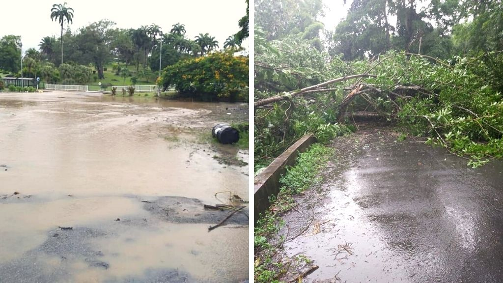 Photos via the Tobago Emergency Management Agency (TEMA).