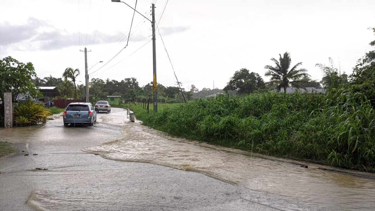Pictured: Street flooding in Greenvale. Photo by Nneka Parsanlal.