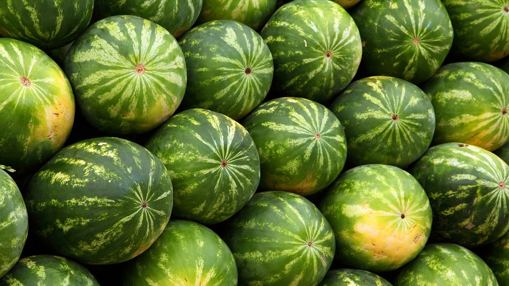 Image: Watermelons piled high. Photo by PublicDomainPictures from Pixabay.