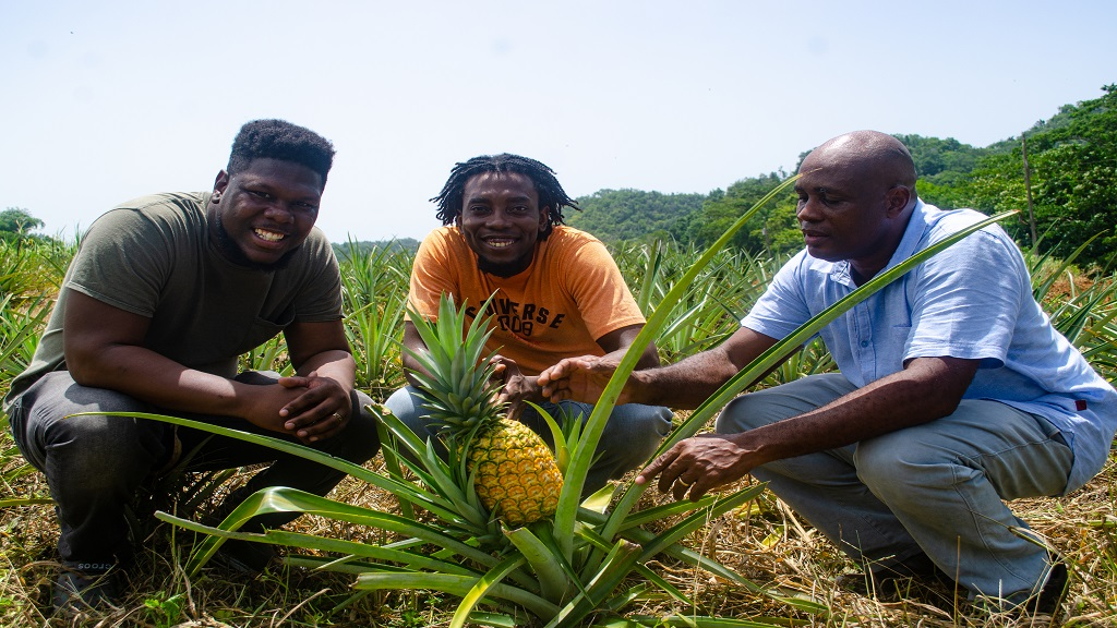Business partners and operators of OMG Farms (from left) Cofounder and Managing Director, Jevaughn Whyte; Cofounder and Director of Logistics, Terrique Goldson, and Agricultural Service Manager, Patrick White.