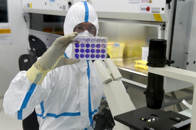 Un technicien examine une plaque de cellules infectées par le virus du Sars-Cov-2 au laboratoire de la société de biotechnologie Valneva, le 30 juillet 2020 à Saint-Herblain, près de Nantes