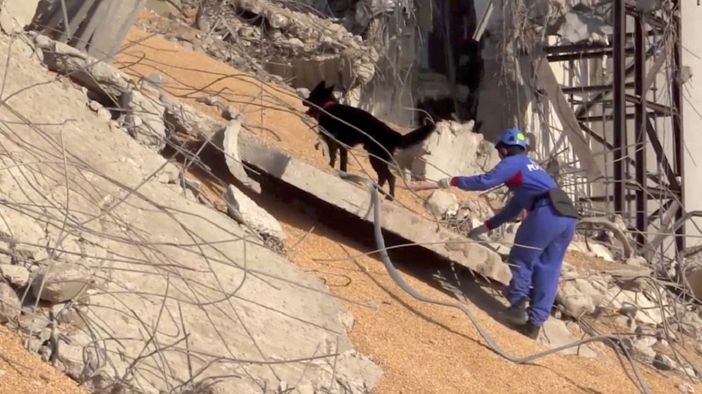 In this photo taken from footage provided by the Russian Emergency Situations Ministry press service, a Russian Emergency Situations employee works with his sniffer dog on the site of the explosion in the port of Beirut, Lebanon, on Thursday, Aug. 6, 2020. (AP Photo/Ministry of Emergency Situations press service via AP)