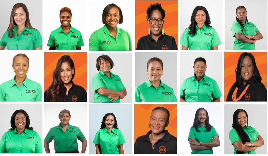 The photos of the record 18 women who will be seated in the House of Representatives when Parliament reconvenes.