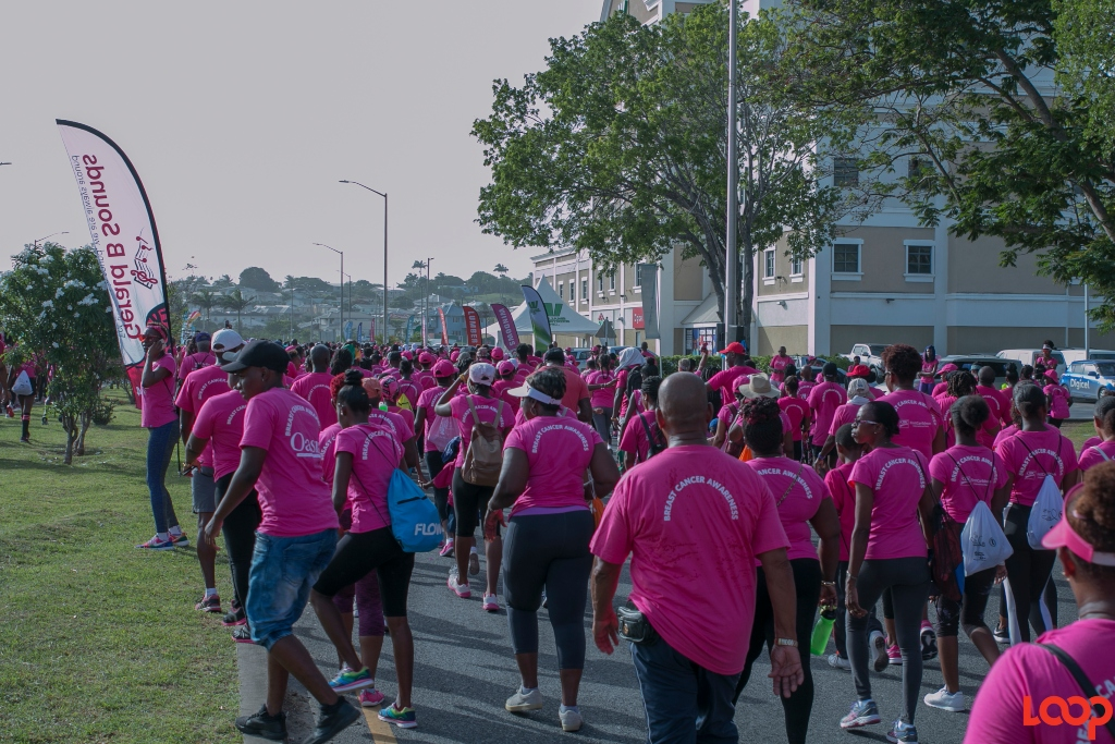 Sea of pink as persons participate in the local Walk for the Cure (FILE)