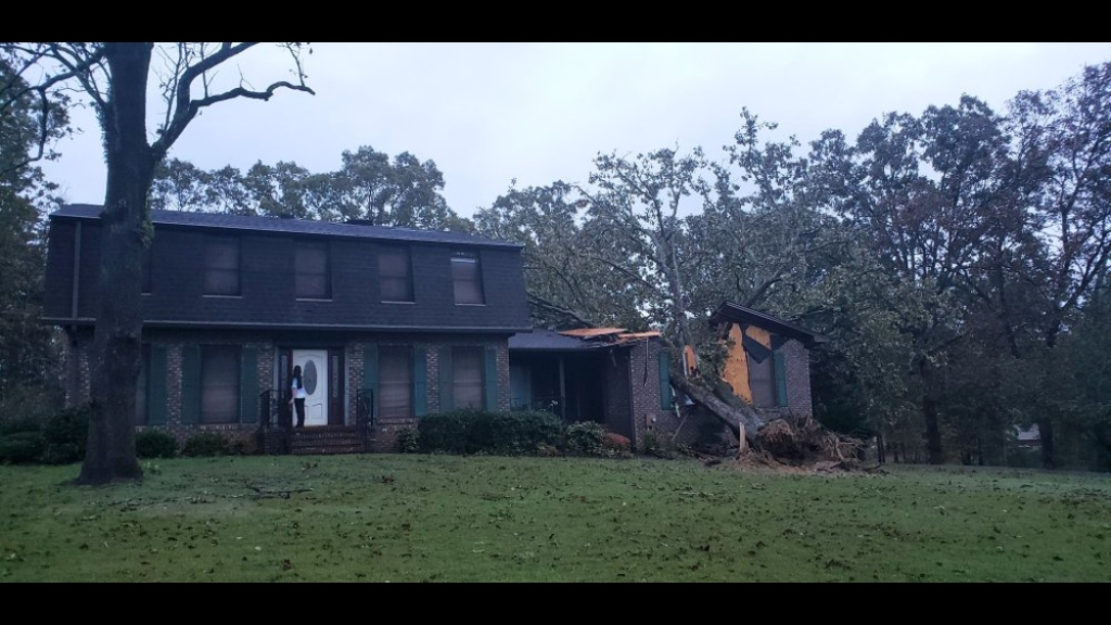 A fallen tree lays on a home damaged by Tropical Storm Zeta in Lincoln, Alabama, Thursday, October 29, 2020. Photo: Jamie Ooten/ AP)