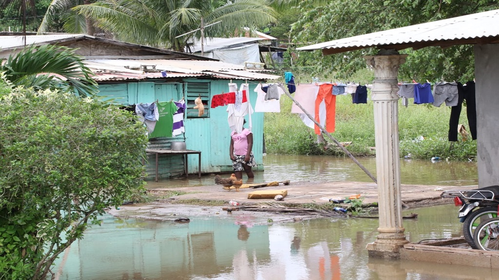 A woman wades through floodwaters to hang clothes on a line in Swansea, Clarendon on Monday.