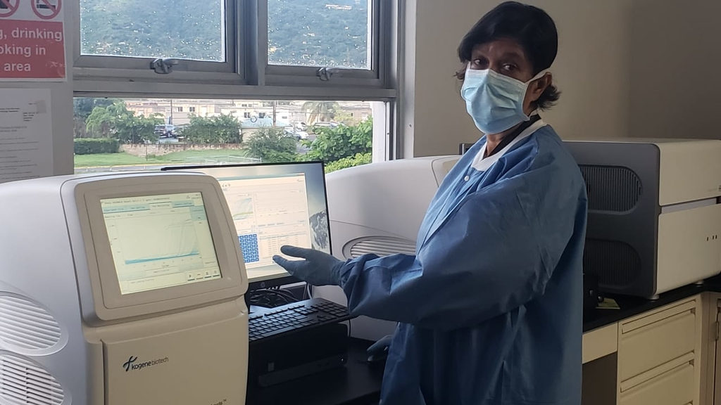 Head of the Department of Microbiology at the University Hospital of the West Indies (UHWI), Dr Alison Nicholson, reviews COVID-19 test results at the PCR Machine.