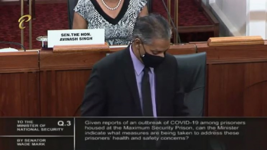 Minister of Agriculture, Land and Fisheries Clarence Rhambarat speaks in the Senate on November 17, 2020.