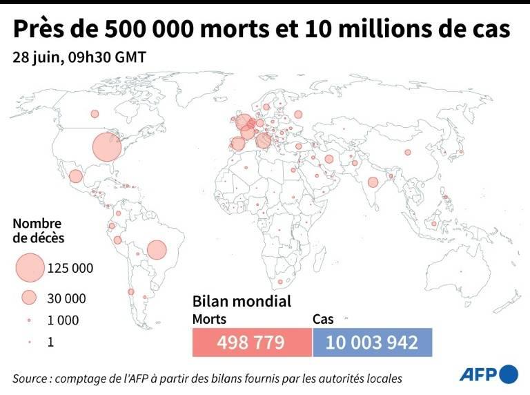 Nombre de morts (et cas) liés au coronavirus officiellement annoncés par pays, au 28 juin à 09h30 GMT ( AFP /  )