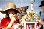 Scamp the Tramp is held by Darlene Wright after winning the World's Ugliest Dog Contest at the Sonoma-Marin Fair in Petaluma, Calif., on Friday, June 21, 2019. (AP Photo/Noah Berger)