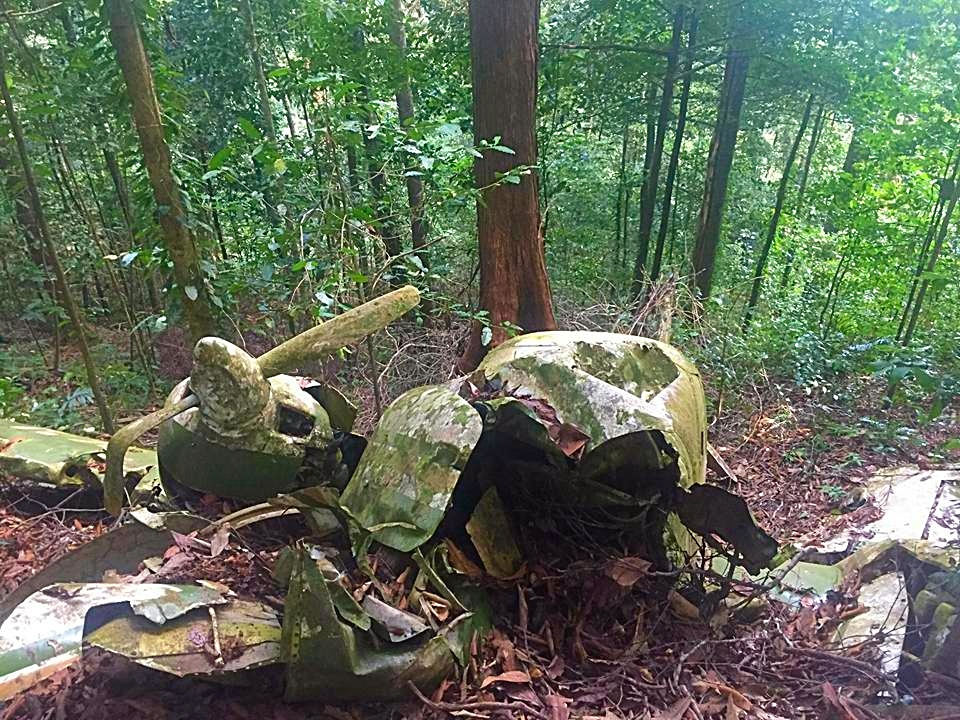 Story of Chaguaramas plane wreck goes viral online | Loop News