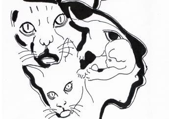 Op de dag voor moederdag verkoopt de dierenbescherming T-shirts met een ontwerp van Rinaldo Klas.