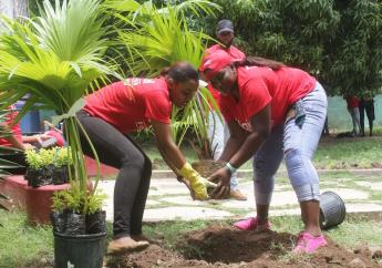 Digicel Foundation volunteers plant a tree at the Community Based Rehabilitation Project facility along Monk Street in Spanish Town on Tuesday, Labour Day. (PHOTO: Marlon Reid)