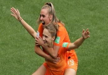 Netherlands celebrate against Cameroon.