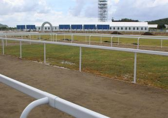 A wider view of the horse track