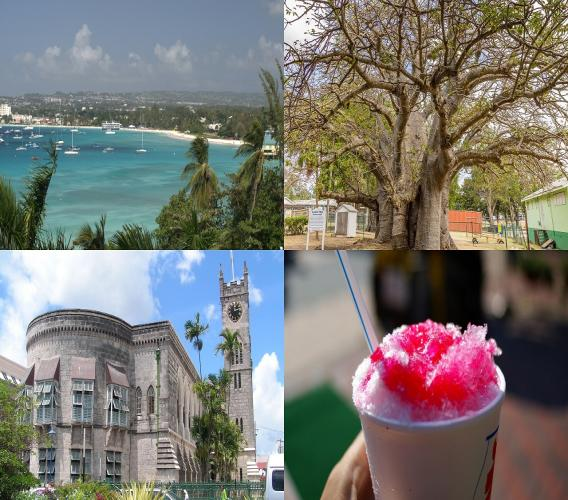 (Clockwise from top left: Carlisle Bay, giant Baobab tree, snow cone, parliament)
