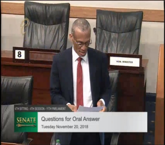 Photo: Minister of Foreign and CARICOM Affairs, Dennis Moses.