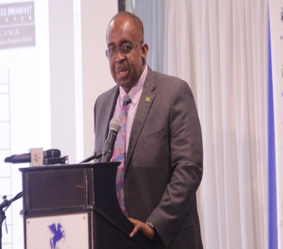 NCB Financial Group CEO and Guardian Holdings Limited Chairman Patrick Hylton