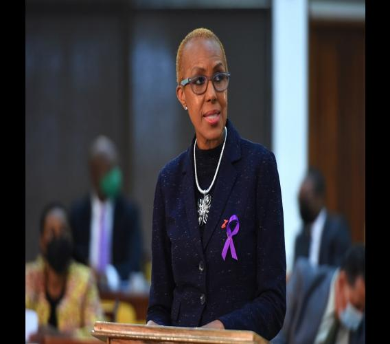 Minister of Education, Youth and Information, Fayval Williams, addresses Tuesday's sitting of the House of Representatives, at the Jamaica Conference Centre, in downtown Kingston. (Photo: JIS)