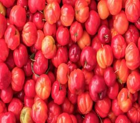Stock photo of the Acerola fruit, popularly known as West Indian Cherry.