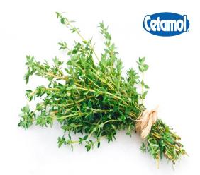 A bunch of fresh thyme (Photo: iStock)