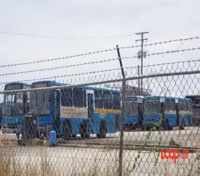 Transport Board buses in Barbados (FILE)