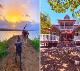 Photos L-R: Happy pets explore Point Radix. Toucan House (right) is also available for rent. All photos courtesy Point Radix.