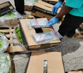 The shipment of bananas in which drugs were found this morning.