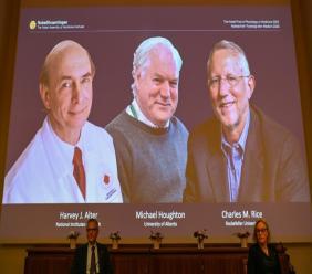 Le Nobel de médecine est attribué à trois virologues, le Britannique Michael Houghton (c) et les Américains Harvey Alter et Charles Rice, le 5 octobre 2020 à Stockholm