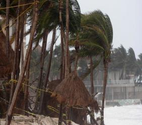 Palm trees are buffeted by the winds of Hurricane Zeta in Playa del Carmen, Mexico, early Tuesday, October 27, 2020. Zeta is leaving Mexico's Yucatan Peninsula on a path that could hit New Orleans Wednesday night. (AP Photo/Tomas Stargardter)