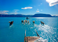 In this photo taken on Thursday, June 13, 2019 sled dogs make their way in northwest Greenland with their paws in melted ice water. Greenland's ice melting season normally runs from June to August but the Danish Meteorological Institute said this year's melting started on April 30, the second-earliest time on record going back to 1980. (Danmarks Meteorologiske Institut/Steffen M. Olsen via AP)