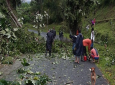 Residents clearing a road in L'anse Fourmi/Bloody Bay following the effects of Tropical Storm Karen earlier today.  Photo submitted to Loop by Tobago resident