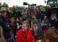 Protesting farmers gather in The Hague, Netherlands, Wednesday, Oct. 16, 2019. Thousands of Dutch farmers protest over the Netherlands efforts to drastically reduce emissions of greenhouse gases. Among the farmers' demands are that the government does not further reduce the number of animals they can keep. (AP Photo/Peter Dejong)