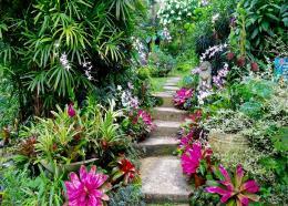 (Image: Hunte's Garden, courtesy of Hunte's Garden)