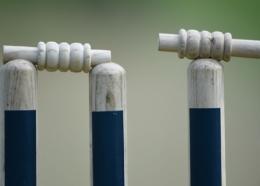 Cricket stumps.