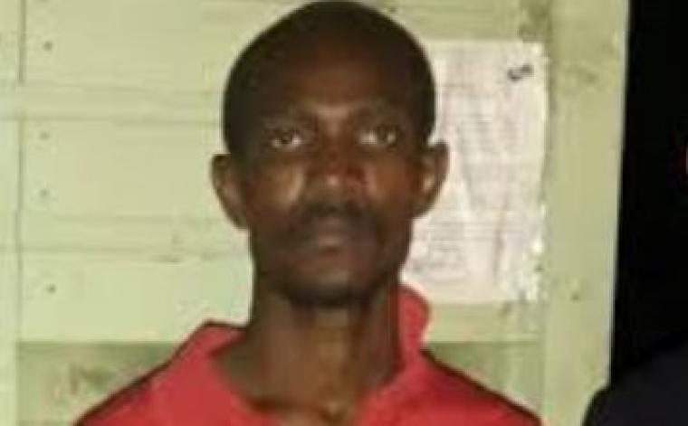 La Justice extrade un Haïtien qui prend 30 ans de prison en RD