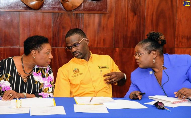 Minister of Culture, Gender, Entertainment and Sport, Olivia Grange (left), converses with Permanent Secretary in the ministry, Denzil Thorpe (centre), and National Labour Day Activities Co-ordinator in the ministry, Pat Amos, during a Workers' Week/Labour Day Planning Committee meeting at Jamaica House on Thursday, April 18.